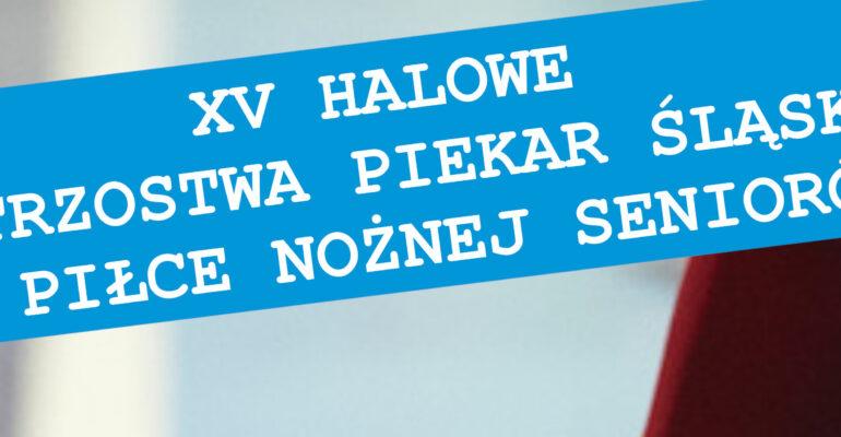 XV Halowe Mistrzostwa Piekar Śląskich Seniorów w Piłce Nożnej