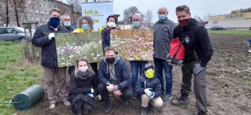 Społecznicy zasadzili Metropolitalne Łąki Kwietne